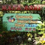 グアム「ハマモトガーデンズ」で美容にいいフルーツ食べ放題!ここでしか買えないグアムのお土産も!